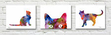 Abstract Cats Set of 3 Watercolor Paintings 11 x 14 Art Prints by Artist DJR