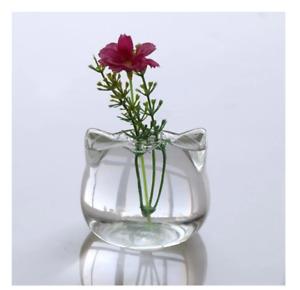 1x Cute Cat Ears Clear Glass Flower Pot Plant Vase Water Propagation Home Decor