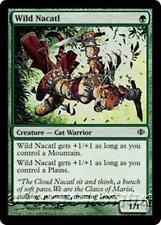 WILD NACATL Shards of Alara MTG Green Creature — Cat Warrior Com