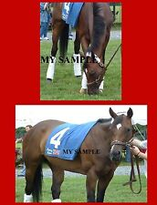 """2 Round Pond 8"""" by 10"""" Photos 2006 Breeders Cup Distaff Horse Racing #1"""