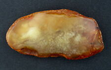 BALTIC AMBER STONE 47.5 gr. NATURAL 100%