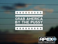 Grab America by the P*ssy - Donald Trump Parody - Funny Vinyl Sticker - White