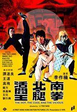 The Hot The Cool and the Vicious-- Hong Kong RARE Kung Fu Martial Arts Action mo