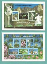 MADAGASCAR MADAGASKAR MALAGASY BAOBAB BOABOB ORCHIDEE ORCHIDEA ORCHID LEMUR
