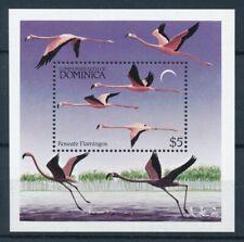 [105766] Dominica 1984 Birds vögel oiseaux flamingos Souvenir Sheet MNH