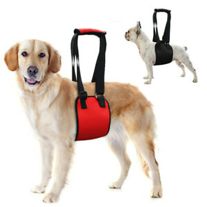 Pet Dog Lift Harness Rehabilitation Elderly Support Carrier Injury Recovery Vest