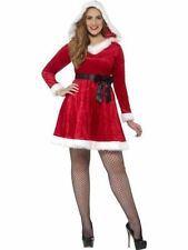 Plus Size Christmas Costumes for Women