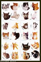 Cat Dot Stickers x 24 (6 sheets) - Favours - Kittens, Cats, Dots Sticker
