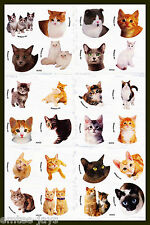 Cat Dot Stickers x 24 (6 sheets) - Favours - Kittens, Cats, Dots Sticker
