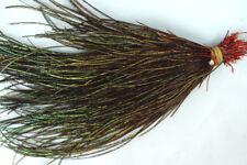 2g Herl de Queue de PAON ROUGE plume decoración plumas