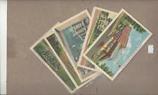 Excelsior Springs, MO, Lot of 5 White-Border Postcards