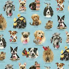 Fabric Dog Breeds at Play on Blue Elizabeth Cotton 1/4 Yard 4330E-BLU