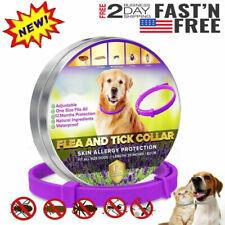 Dewel Cheaper than Seresto�Flea & Tick Collar for Large Dog 1Year Protection Us