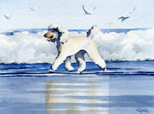 White POODLE AT THE BEACH Watercolor 8 x 10 ART Print Signed by Artist DJR