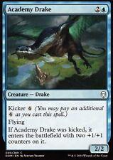 4x Academy Drake   nm/m   Dominaria   Magic mtg