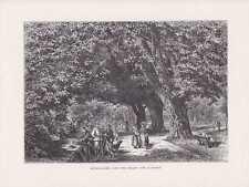 Interlaken Bergsteiger Park Allee Damen HOLZSTICH um 1880