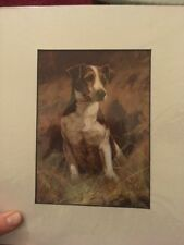Jack Russel Dog Mounted Art Print 10 X 8