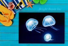 LED Canvas Painting Jellyfish Home Living-room Dinning Wall Decoration P-C41