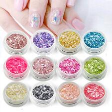 12 Pcs Mixed Color Glitter Shell Chips Powder Nail Art Nail Decals Tips +Storage