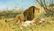 Charming oil painting wild animal King of beasts lion with his prey Antelope 36""