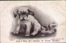 (tpt) Dog Postcard: Can I Put My Shoes In Your Trunk