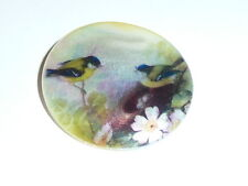 """Little Birdies at Nest Button on Mother of Pearl MOP Shank Button 1+3/8"""""""