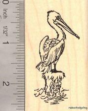 Pelican Water Bird Rubber Stamp Sea Marine  J14403 WM