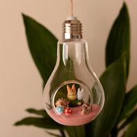New Stand/Wall Hanging Light Bulb Glass Flower Vase Terrarium Landscape Bottle A
