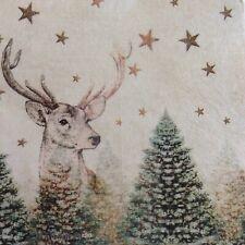 Papel Servilletas Decoupage X 2 Navidad Ardilla y Robin 21cm