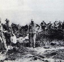 Rorke's Drift Survivors Zulu War British Army 1879 5x5 Inch Reprint Photo