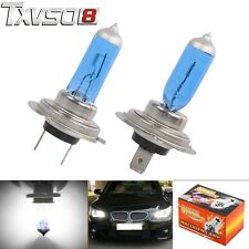 2 x H7 12V 100W Xenon White 6000k Halogen Blue Car Head Light Lamp Globes/Bulbs