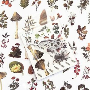 Set of 40 Autumn Forest Flowers Berries Foliage Vellum Paper Peel Off Stickers
