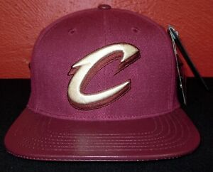 NBA Clevland Cavaliers Pro Standard Leather & Wool Cap Hat (Brand New) + Pins