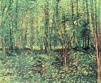 Trees and undergrowth by Vincent Van Gogh Giclee Fine Art Print Repro on Canvas
