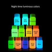 30g Fluorescente Pintura Pigmento Brillante DIY Oscuridad Graffiti  !