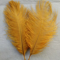 """FEATHERS GOLDEN OSTRICH X 5 pcs  Millinery and Crafts 5"""" x 7"""" 20 x 15cm"""