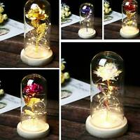 LED Light Rose In Glass Gold-plated Rose Night Light Party Home DIY Decor