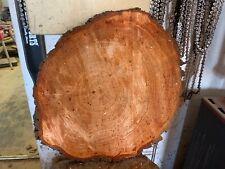 Baumscheibe ca 60x50x5cm Holzscheibe