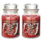 Lemier Remier 630 g Basic Large Candle 2ea