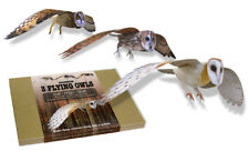 Flights of Fancy Card Flying Owls. Three Dimensional card Birds