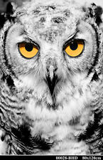 Owl with Yellow Eyes Portrait Painting Hand Painted Plexiglass Acrylic 80x120cm