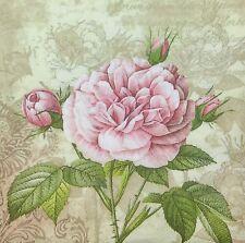 3x Single Paper Napkins Decoupage Craft Tissue English Garden Rose Flower M126