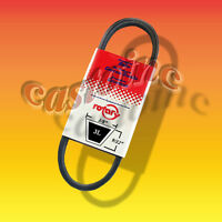 YAZOO or KEES 205356 Replacement Belt