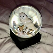 High End Luxury White Snowy Owl Sitting on Branch Snow Globe On Wooden Base