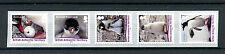 BAT British Antarctic Ter 2016 MNH Gentoo Penguin 5v Birds Penguins Coil Stamps