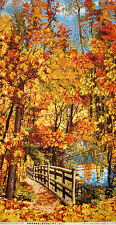 "Autumn Fence Nature Path Cotton Fabric C3568 Timeless Treasures 23.5""X44"" PANEL"