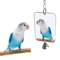 Funny Parrot Bird Parakeet Hanging Mirror Bell Play Toy Cage Decor Pet Supplies