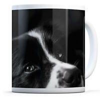 Border Collie Sheep Dog - Drinks Mug Cup Kitchen Birthday Office Fun Gift #8639