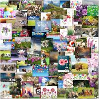 Pack of Mixed Birthday & Blank Greeting Cards Male Mens Female Ladies Childrens