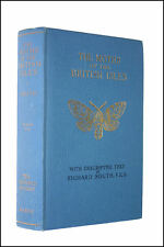 The Moths of the British Isles by South, Richard